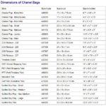 Kích thước của túi xách Chanel chính hãng trên Thế Giới
